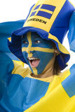 Sweden Fan Stock Photo