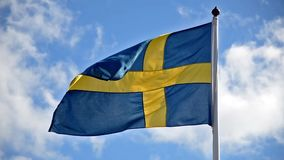 Sweden Flag stock footage