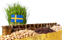 Sweden flag waving with stack of money coins and piles of wheat. And rice seeds Royalty Free Stock Images