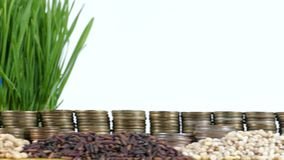 Sweden flag waving with stack of money coins and piles of wheat. And rice seeds stock footage