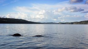 Sweden lake in summer Stock Photos