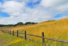 Sweden. Mounds of Old Uppsala. Sweden. Goden Mounds of Old Uppsala in summer Royalty Free Stock Photo