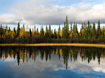 Sweden rural Imagem de Stock