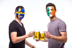 Sweden vs Republic of Ireland football fans drink beer on white background. Stock Image