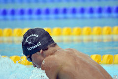 Swedish championship in swimming Royalty Free Stock Photo