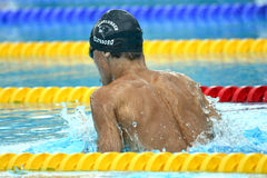 Swedish championship in swimming Stock Images
