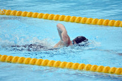 Swedish championship in swimming Stock Photos