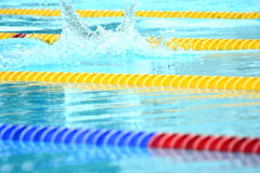 Swedish championship in swimming Stock Photography