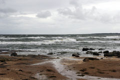 Swedish coast. In summer with dark sky Stock Images