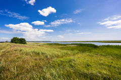 Swedish coast in summertime. With cloudy blue sky Stock Photo