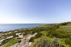 Swedish coastline Royalty Free Stock Image