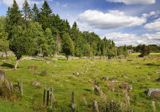 Swedish country details Royalty Free Stock Photos
