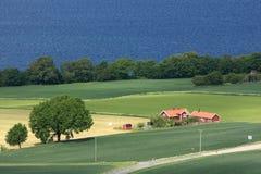 Swedish countryside Stock Image