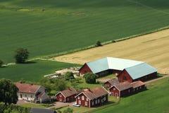 Swedish countryside Royalty Free Stock Photo