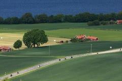 Swedish countryside Stock Photos