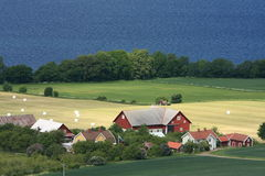 Swedish countryside Stock Photos