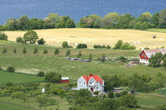 Swedish countryside Stock Photography