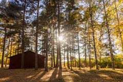 Swedish countryside scenery Stock Photos