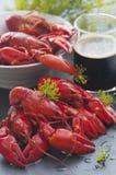 Swedish Crayfish Stock Image