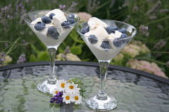Swedish dessert with blueberries. Blueberries with vanilla ice cream are served in the garden Stock Images