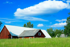 Swedish farm scenery. Typical Swedish farmland view of red wooden barns, green meadows and blue skies Stock Images