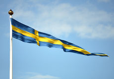 Swedish flag. Blowing in the wind Royalty Free Stock Photo