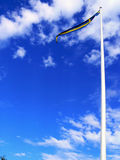 Swedish flag. Waving in the wind Royalty Free Stock Photos