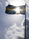 Swedish flag. Waving in the wind royalty free stock photo