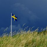 Swedish flag. In Royalty Free Stock Images