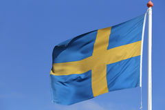 Swedish flag. Blowing in the wind Royalty Free Stock Images