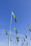Swedish flags Stock Image