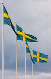 Swedish flags. Four Swedish flags in a row Stock Images