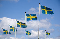 Swedish flags. Row of swedish flags blowing in the wind Royalty Free Stock Image