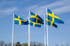 Swedish flags Royalty Free Stock Photography