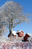 Swedish cottage in winter scenery Royalty Free Stock Images