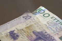 Swedish Krona. Macro shot of Swedish Krona currency Stock Image