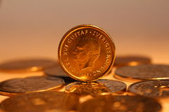 Swedish Kronor Royalty Free Stock Photography