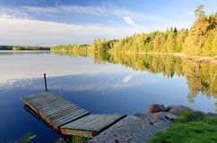 Swedish lake in september morning light Stock Images