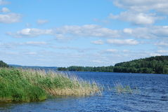 Swedish lake in summer Stock Photos