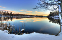 Swedish lake sunset in firs winter season Stock Images