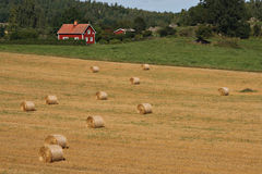 Swedish landscape. With typical red house and a field with straw bales Stock Images