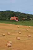 Swedish landscape. With typical red house and a field with straw bales Royalty Free Stock Photo
