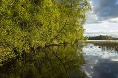 Swedish Landscape And Nature Stock Photography