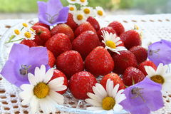 Swedish Midsummer dessert - strawberries Royalty Free Stock Photo