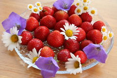 Swedish Midsummer dessert - strawberries. Sweet Swedish strawberries on glass-plate to be served for Midsummer evening, decoration of daisies and bluebells Royalty Free Stock Image