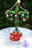 Swedish Midsummer pole  with strawberries in front. Small Midsummer pole for table is standing in garden with fresh strawberries in front Stock Images