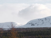 Swedish mountain. Mountain in Lappland with snow and sun Stock Images