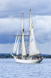 Swedish navy schooner HMS Gladan Stock Photography