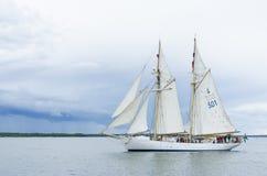 Swedish navy schooner HMS Gladan stock photo