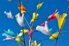 Swedish påskris, Easter twigs. With feathers of various colors Royalty Free Stock Image